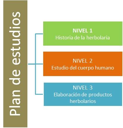 Plan Estudios 2016